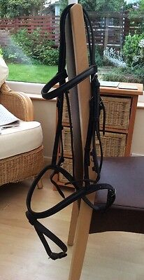 Sabre Bridle Black Full Size With Flash Nose band