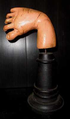 Rare Vintage Anatomical Wooden Life Size Baby's Club Foot On Stand.