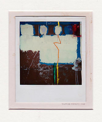 Thomas Hegarty - Original Polaroid  signiert 1986