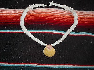 Sunrise shell real puka necklace