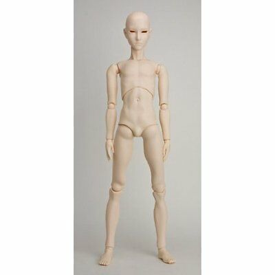 Obitsu 1/3 scale 65cm male body 65BD-M01W-G Whity from Japan EMS