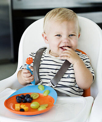 Boon Baby Toddler Catch Plate With Suction Base - 4 Colour Options