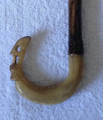 Hand Carved Rams Horn Walking Stick