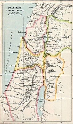 Map of Palestine New Testament  Original Antique  1907
