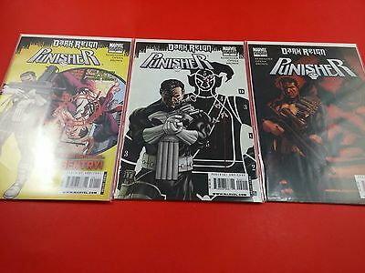 Punisher Dark Reign #1,2,3 Variant 2009