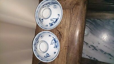 Two 19th cnetury Chinese blue & white porcelain bowls