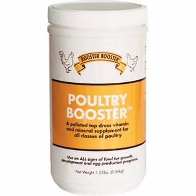 Rooster Booster Poultry Booster Pelleted Top Dressing for Bone Egg 1.25 Pounds