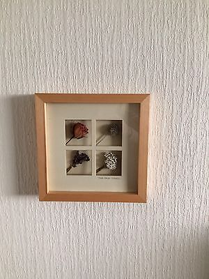 Wall Art -picture   Dried Flowers In A Large Wood Frame