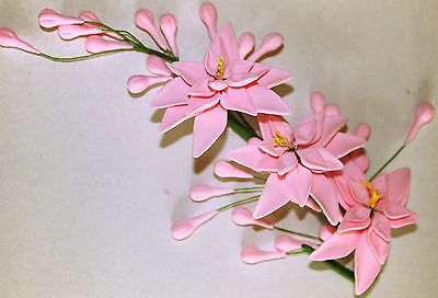 Tuberose PINK Sugar Flower Spray, Cake Topper, Sugar Paste, Sugarcraft.