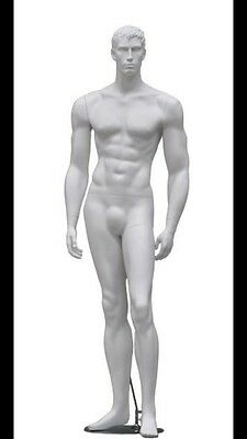 LOOK! - New Full Body White Athletic Build Male Mannequin