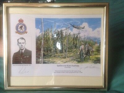 RAF WW2 Aviation Signed Print of Bob Doe's DAZ Spitfire over Kent Hopfields