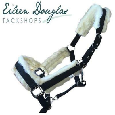 EDT Horse Padded Headcollar with Faux Sheepskin All Sizes Pony,Cob,