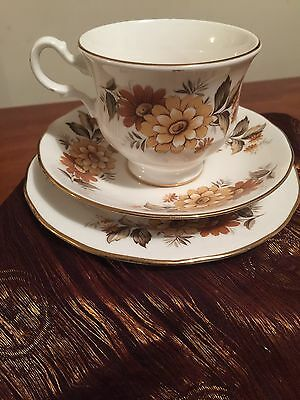 VINTAGE QUEEN ANNE ENGLAND BONE CHINA CUP SAUCER PLATE TRIO - pattern 8620