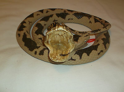 Real Diamondback Rattlesnake Head, Large, Open Mouth,  Taxidermy