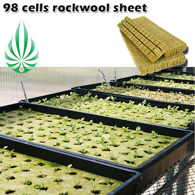 Grodan Rockwool Stone Wool Sheet 98 Cells Propagation Blocks Hydroponics Medium