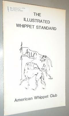 The Illustrated Whippet Standard Drawings and Explamations by Mary Beth Arthur