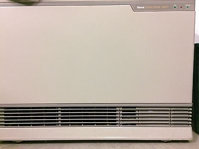 Rinnai Energysaver 1001FT Gas Heater
