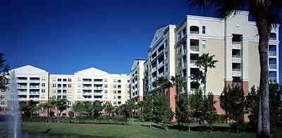 Accommodation In Deluxe Suite In Vacation Village At Weston, Florida Usa