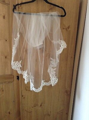beautiful ivory waist length beaded lace bridal veil with clear comb