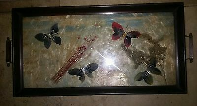 Unique Vintage antique Butterfly decorated tray with handles
