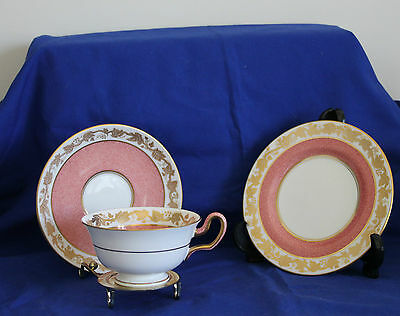 Wedgwood Cup, Saucer & Plate Trio Rare Salmon pink Whitehall pattern W3991