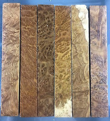 pen blanks, brown mallee burl,