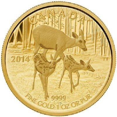 Kanada - 200 Dollar 2014 - Weißwedel-Hirsch - Wildlife (3.) - 1 Oz. Gold in PP