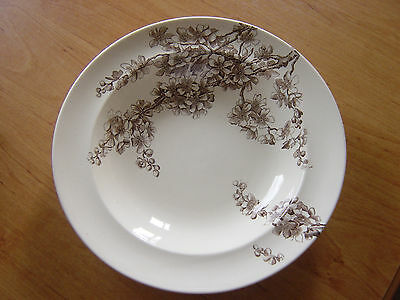 rare george jones & sons peach blow pattern bowl 1886