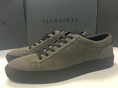 """All Saints Cement Grey """"crescent Low Top"""" Leather Trainers Shoes Uk 8 New Boxed"""
