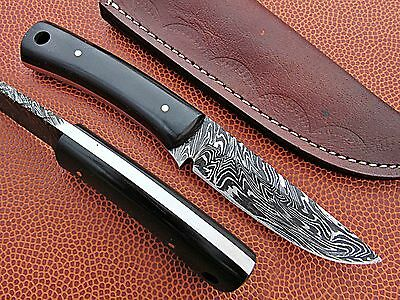 Custom Hand Made Damascus steel Hunting Mini Knife With Buffalo horn Handle.