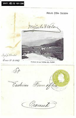 AAA,Thematic,Illustrated Stationery,Postal Cover,PSC,Argentina 1903,Bull,Cow