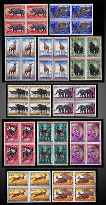 Congo**ANIMALS-GORILLA-Elephant-RHINO-MONKEYS-OKAPI-12 BLOCKS@ 4 stamps-1959
