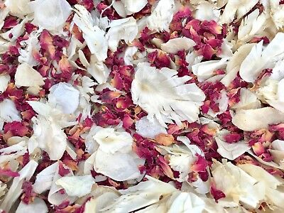 Yellow & Ivory Petals, Dried & Biodegradable Wedding Confetti. Vintage Flower 🌷