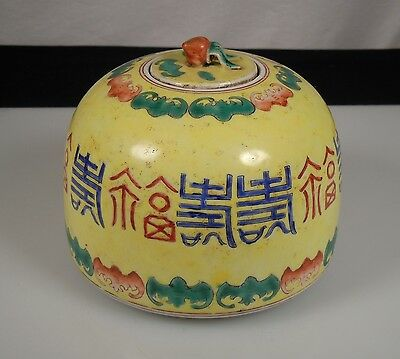 Chinese Porcelain Water Coupe Pot