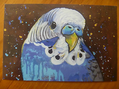 Postcard...blue Budgerigar...artistic..close Up With Detail..budgie..bird