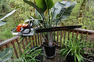 PILTZ Stihl MS880 Customised CHAINSAW 50 inch bar and chain