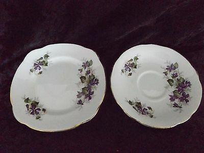 Duchess Purple Violets Flowers Fine Bone China Saucer and Side Plate