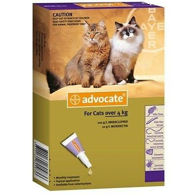 Bayer Advocate Spot-On For Cats & Kittens 0.8ml - Pet Care Products