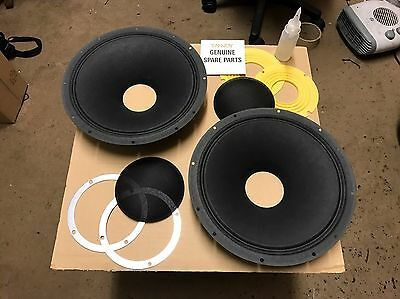 Tannoy Monitor Gold 111 LZ Cones