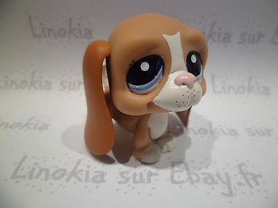 LPS LITTLEST PETSHOP PET SHOP dog chien basset 2016