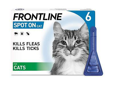 Front line Spot On 1 3 6 Pipettes Flea Infestion Cat Treatment Biting Lice Ticks