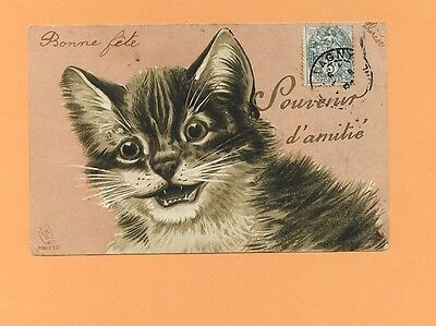 Carte Postale Old Postcard Cat CPA CHAT en relief - cat embrossed 1904