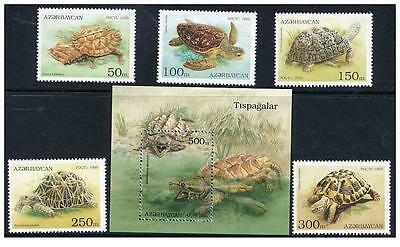 Azerbaijan 1995 turtles fauna s/s+set MNH