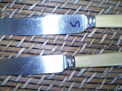 2 Colletable vintage pinder Brothers eng s/steel butter knives cream handles (5)