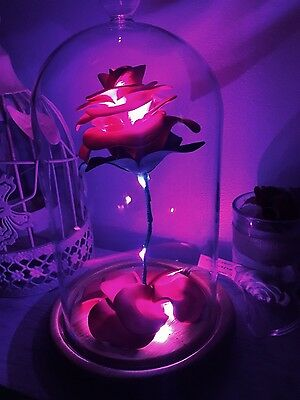 Beauty and the Beast, Rose in Bell Jar