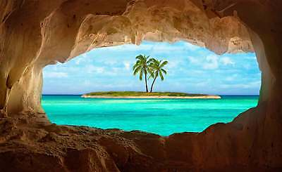 WALL MURAL PHOTO WALLPAPER XXL Desert Island Palm Trees View From Cave (1X-77679