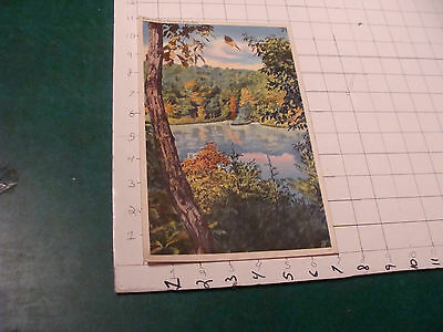 Kennett Neily collection paper - GIANT POST CARD pennyrile state park KY