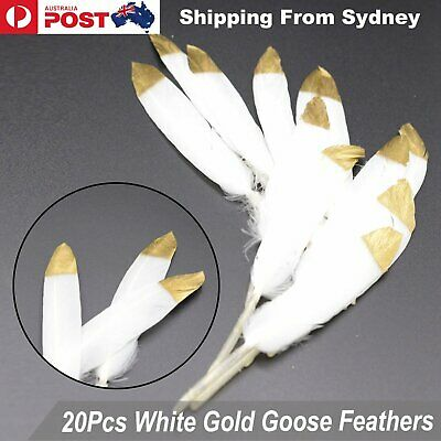 20pcs White Gold Goose Feathers 10-15cm Millinery DIY Craft Wedding Party Decora