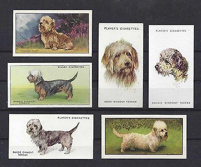 1929 - 1960 UK Dog Art Cigarette Card Collection x 6 DANDIE DINMONT TERRIER