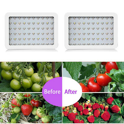 2Pcs New Unopened 600W Dual ChipsFull Light Spectrum LED Plant Grow Lamp Indoor